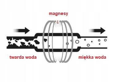obraz 5